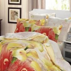 Комплект постельного белья из сатина СайлиД  В-152 двухспальный с евро простынёй