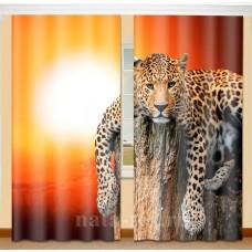 Фотошторы с эффектом объемного рисунка 3D Взгляд 155*270см